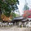 紅葉の名刹。京都槙尾山・西明寺で秋をのんびり感じて来た。