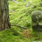 京都大原「三千院」。苔むすみごとな庭が必見です!