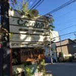 グリーン・コトハ(cotoha)。死ぬほど興奮する観葉植物のお店が京都にあります。