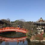 京都三条通りの神泉苑で今年もお参り。龍パワーをたくさんいただいてきました。