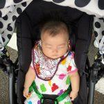 [地元ニュース] 加賀市が2人目保育料無料に。今秋より開始!
