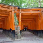 京都、伏見稲荷大社のパワーをいただきました。千本鳥居が圧巻!